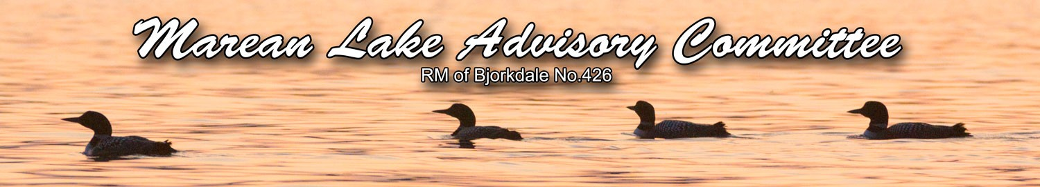 Marean Lake Advisory Committee